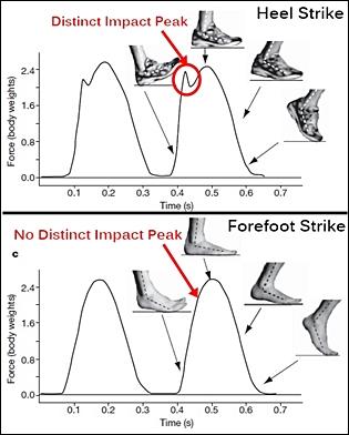 heal strike vs forefoot strike